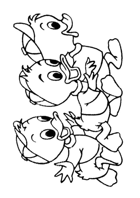 3 chú vịt con