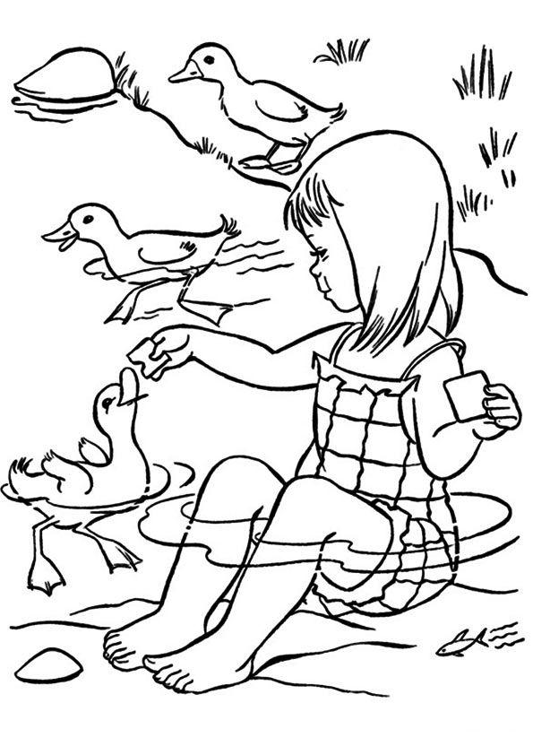 Cô bé và bầy vịt