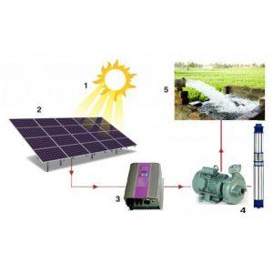 Máy bơm năng lượng mặt trời có đáng để sử dụng